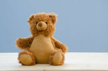 wooden floors: brown bear doll on wooden floors and blue sky background.