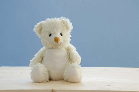 wooden floors: white bear doll on wooden floors and blue sky background. Stock Photo