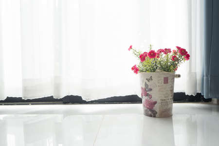 tile flooring: Tile flooring with Red common purslane flower on vintage flower pot and sunlight from glass of windows. Stock Photo