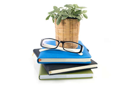 dwarf tree on flowerpot and modern eyeglasses over stack of books on isolated white background.