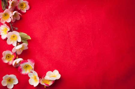Chinees Nieuwjaar te vieren achtergrond met mooie sakurabloesem frame.