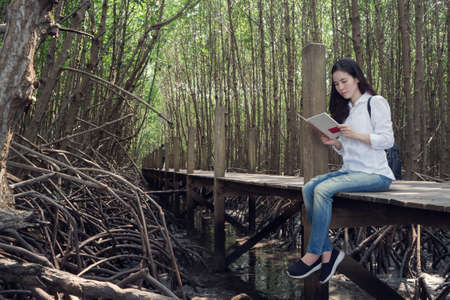 young asian woman in blue jean and white shirt reading book on wooden walkway at public mangrove forest inThailand. view from side woman. 스톡 콘텐츠