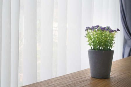 wood office table with violet  flower pot  on white curtain window background, view from front office table. Stockfoto