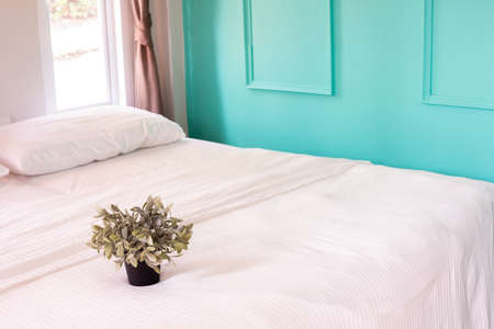 plant pot on white bed in bedroom at home.