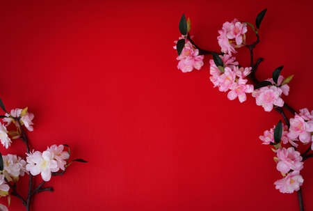 Composition on red background with Sakura flower.