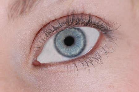 Blue Female Eye 版權商用圖片