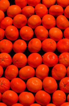 Easy Peel Tangerines