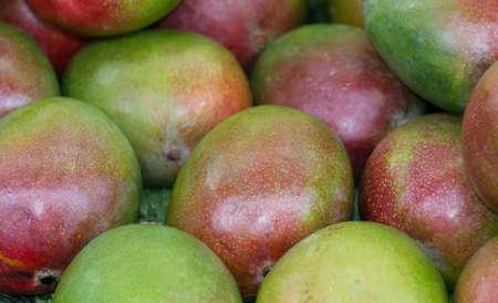 Mango for sale
