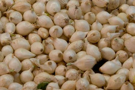 Silverskin Pickling Onions