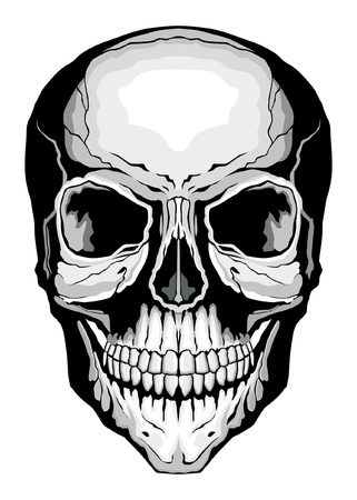 Human Skull is an illustration of a frontal view of a stylized human skull. Çizim
