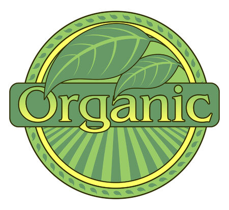 organic farming: Organic Green Design With Leaf Border is an illustration of a design representing natural organic foods and farming with green leaf graphics  Illustration