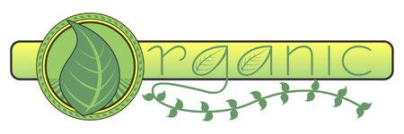有機つるのデザインは自然有機食品を表すと、緑の葉とつるグラフィック農業デザインのイラスト  イラスト・ベクター素材