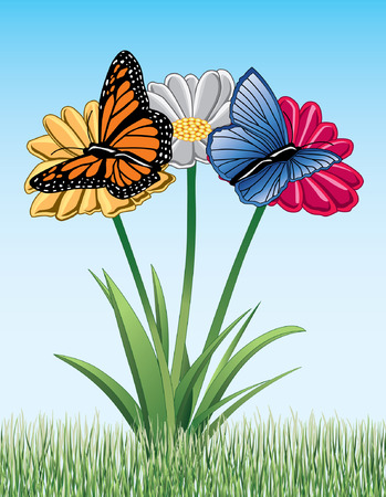 monarch: Butterflies On Daisies is an illustration of two butterflies on daisies  One is a Monarch butterfly and the other is a Blue butterfly
