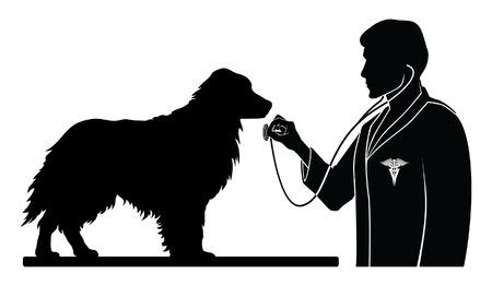 Dierenarts Met Hond is een illustratie van een ontwerp voor een dierenarts of dierenarts. Bevat beelden van een hond, een dierenarts met een stethoscoop en een dierenarts symbool