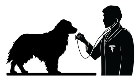 veterinarian symbol: Veterinarian With Dog is an illustration of a design for a vet or veterinarian. Includes images of a dog, a veterinarian with stethoscope and a veterinarian symbol