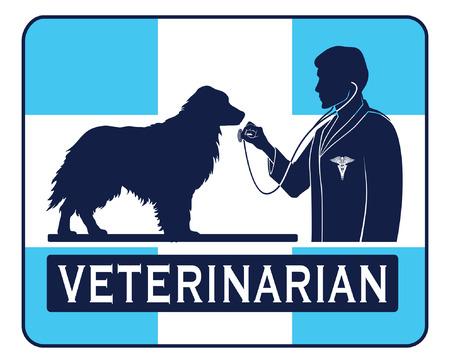 veterinarian symbol: Veterinario con il cane grafica � un esempio di un progetto per un veterinario o veterinario. Include le immagini di un cane, un veterinario con lo stetoscopio, un simbolo veterinario e una forma di croce. Vettoriali