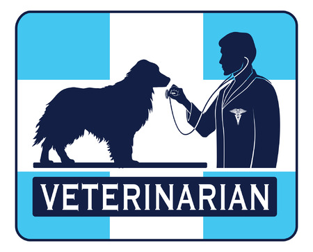 veterinarian symbol: Veterinary With Dog Graphic is an illustration of a design for a vet or veterinarian. Includes images of a dog, a veterinarian with stethoscope, a veterinarian symbol and a cross shape.