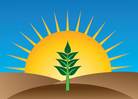 Natural Organic Farming - Sprouting Is an illustration of a multi-leafed plant sprouting or growing from the ground with the rising sun in the background