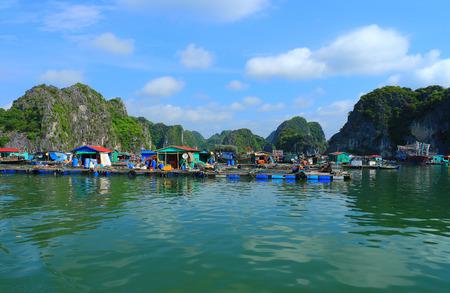 commercial fisheries: cat ba ha long bay floating fish farms vietnam