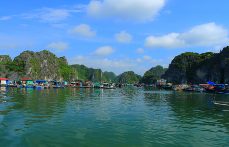 fish rearing: cat ba ha long bay floating fish farms vietnam