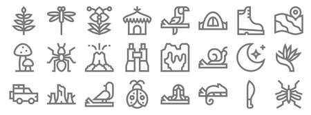 jungle line icons. linear set. quality vector line