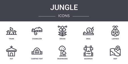 set of 10 jungle concept line icons.