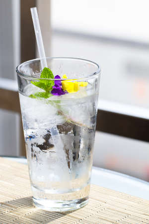 Glass of Ice cold water with  mint and flower Garnish Banco de Imagens