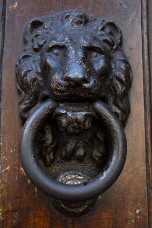 knocker: Lion Door knocker in Florence Italy Stock Photo