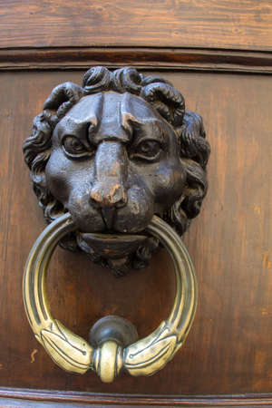 Lion Door knocker in Florence Italy photo