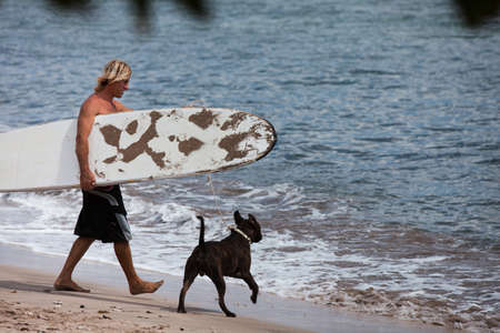 Surfer Walking on the beach  with his Dog photo