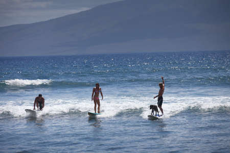Three friends and a dog surfing in Maui photo