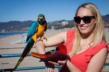 parrot flying: Beautiful Woman tourist with Macaw Parrots on Santa Monica Pier California blue sky