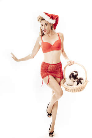 Sexy Pin up beautiful Santa delivering a puppy present photo