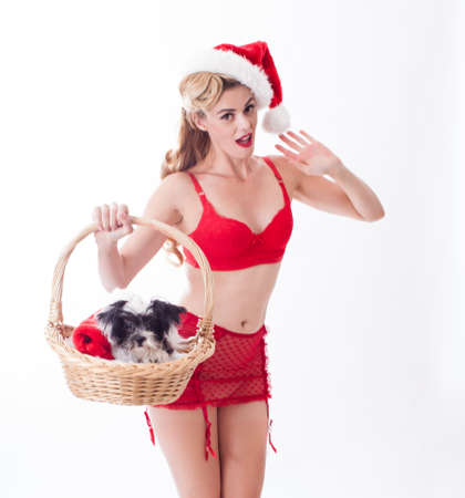 Sexy Pin up beatiful Santa delivering a puppy present photo
