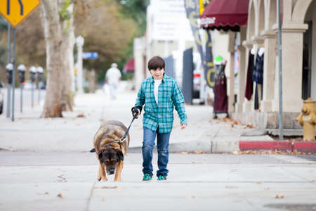 A 10 yeqr old boy and his dog walking down the sidewalk photo