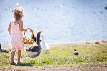 Pretty young girl with Ducks and geese holding a basket photo