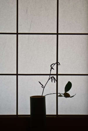 A single rose in a bamboo vase silhouetted against a Japanese paper screen window Stock Photo