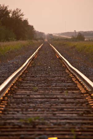 Train tracks illuminated by the setting sun