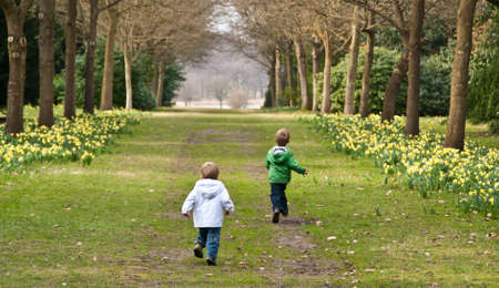 Two young boys run down a country lane lined with Spring daffodils