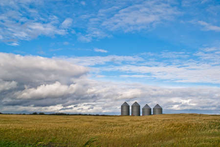 A row of four grain bins stand in the distance on a prairie field