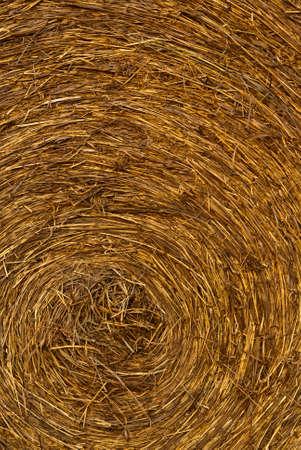A closeup of a hay bale