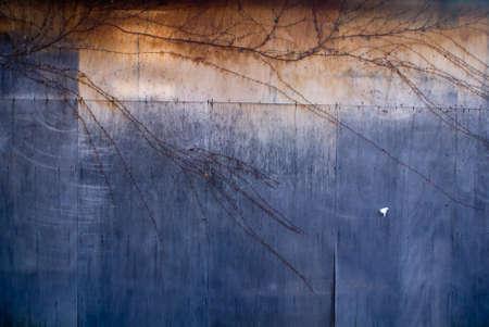 Grungy blue and orange plywood background