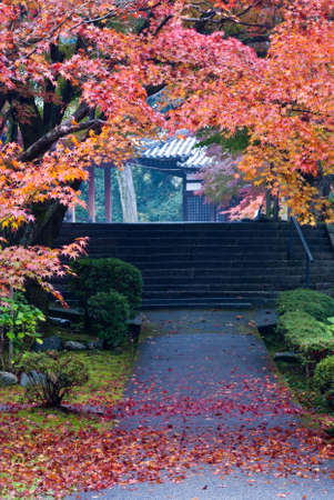 Colorful autumn foliage framing a Japanese temple walkway Stock Photo
