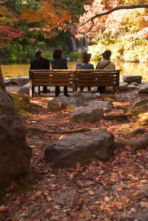 Four Japanese people enjoying an autumnal scene