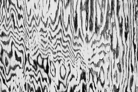 Zebra pattern on an old fishing shed wall