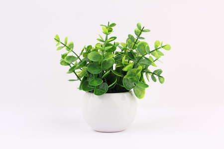 vase: Grass vase