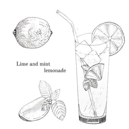 lobule: Lime and mint lemonade ink sketch set. Isolated design elements Illustration