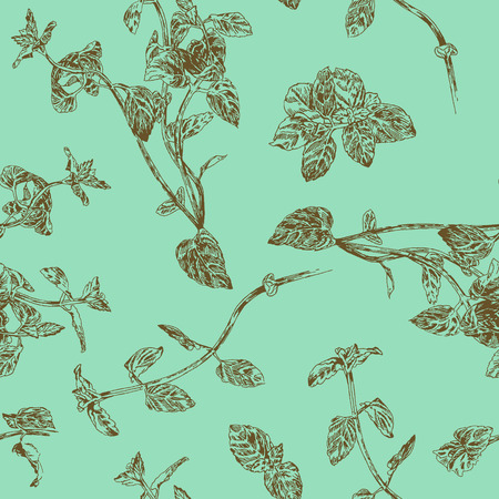 Naadloos bloemenpatroon met pepermunt takjes. Verse subtiele natuur kleuren