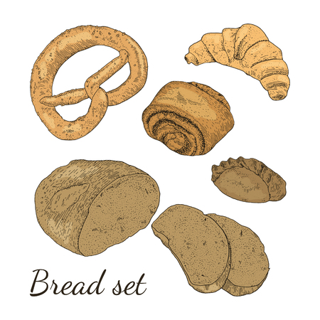 Color bakery set with different type of bread. Loaf of bread, rye pie, bun with poppy seeds, croissant, pretzel. Isolated. Easy to use for different design of menu, advertisement, cafe etc. Çizim