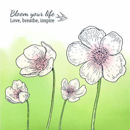 Card template with spring anemone flowers and watercolor background, Romantic style. Inspirational text Çizim